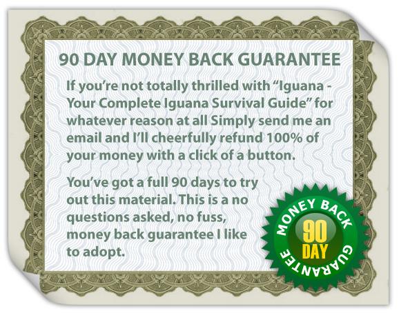 guarantee2 Ultimate Guide To Iguana Care